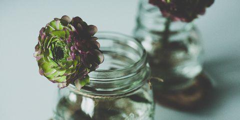 Mason jar, Green, Purple, Glass, Plant, Flower, Leaf vegetable, Drinkware, Vegetable, Still life photography,