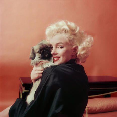 Foto Marilyn Monroe, le nuove foto mai viste
