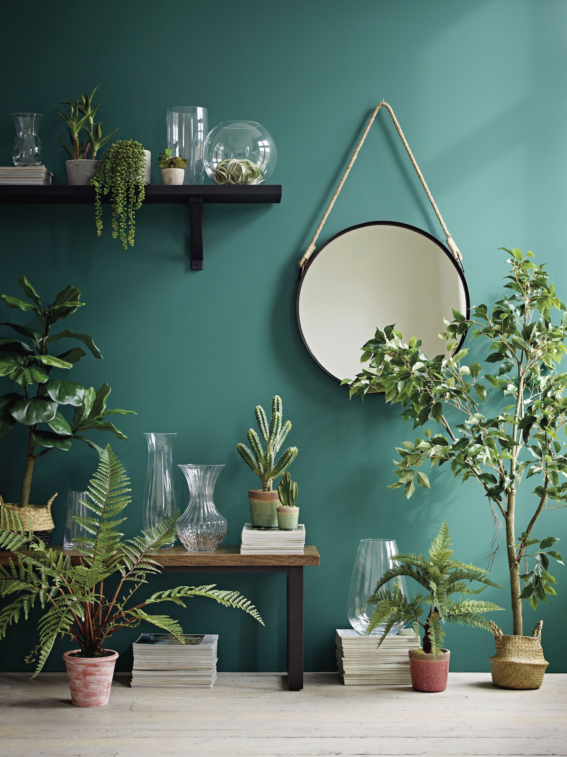 Marks Spencer Plants String Of Pearls Plant Will Help You Achieve Shelfie Goals