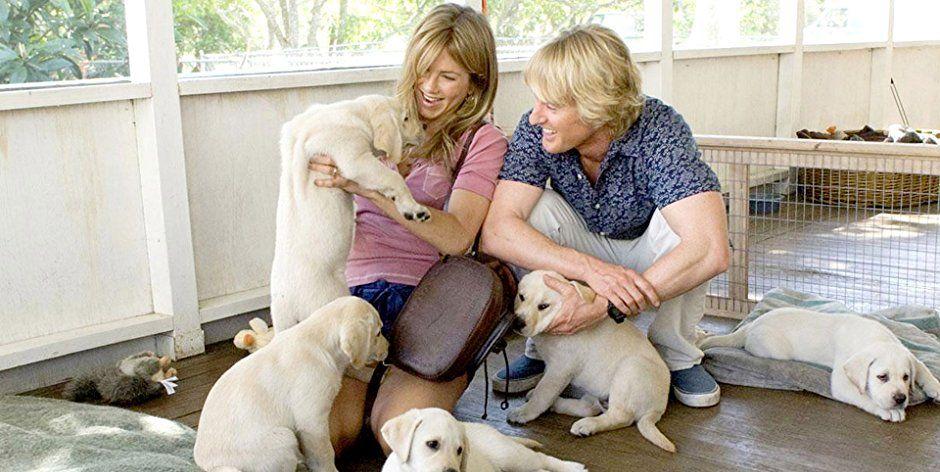 films-met-honden-hoofd-rol