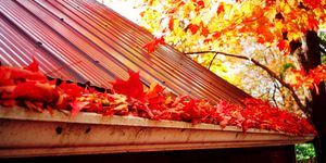Gutter full of leaves - how to clean gutters