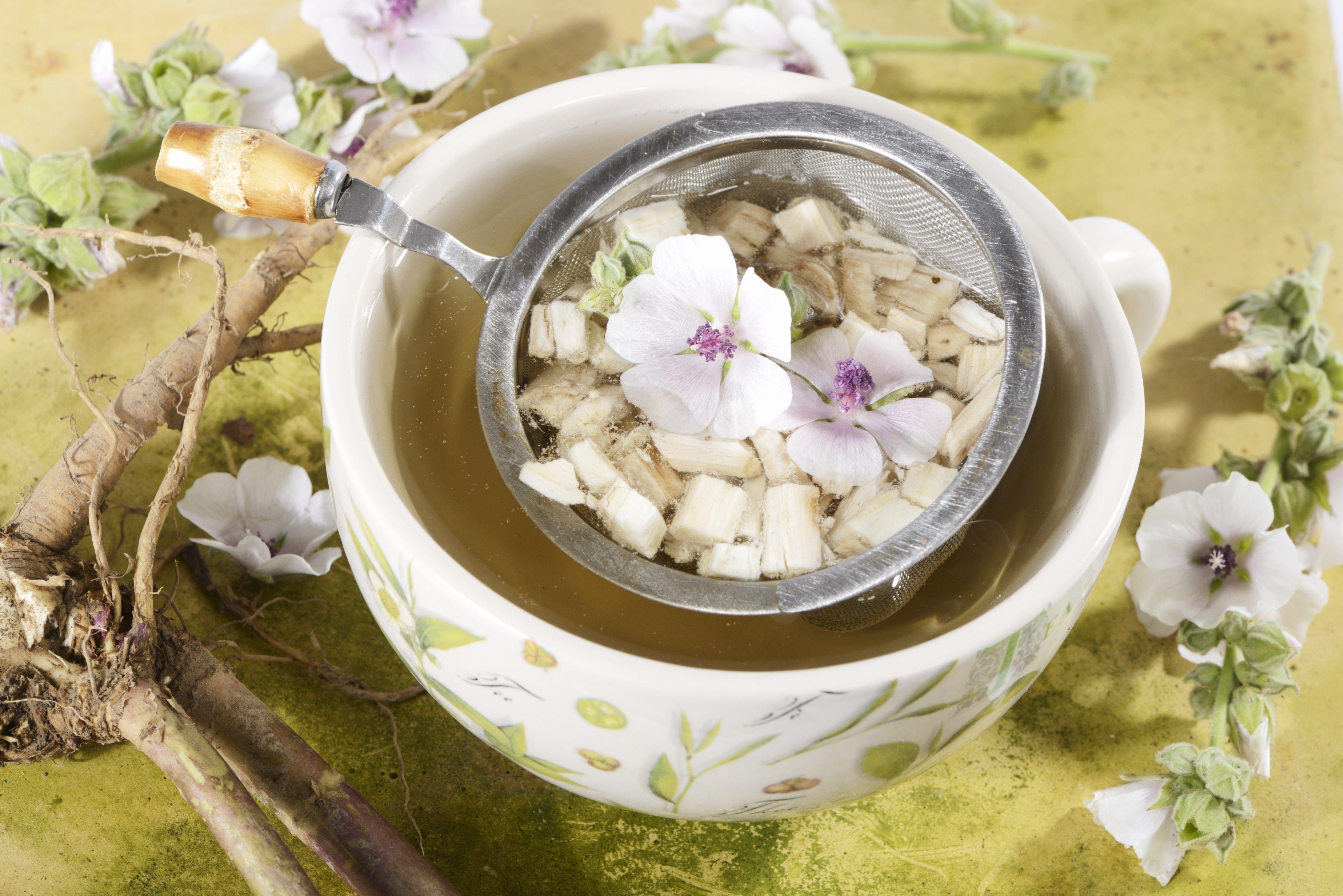 meilleur thé pour les rhumes