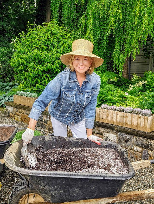 martha stewart new gardening show hgtv