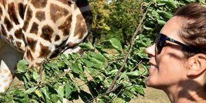 Mary de Dinamarca posando al lado de una jirafa en elKnuthenborg Safaripark