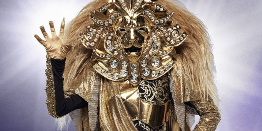 12 Masked Singer Costumes For Halloween 2019 How To
