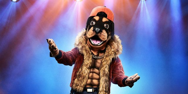 Who Is The Rottweiler on 'The Masked Singer'? This Fan Guess Is The Most Legit One Yet