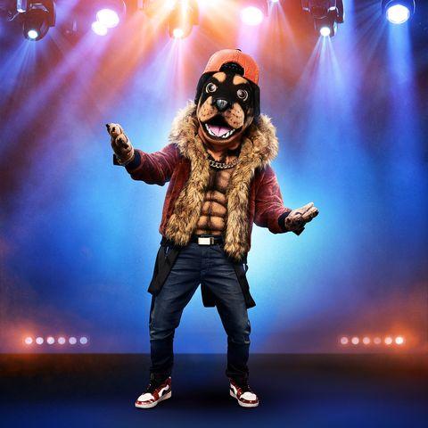 masked-singer-rottweiler-clues