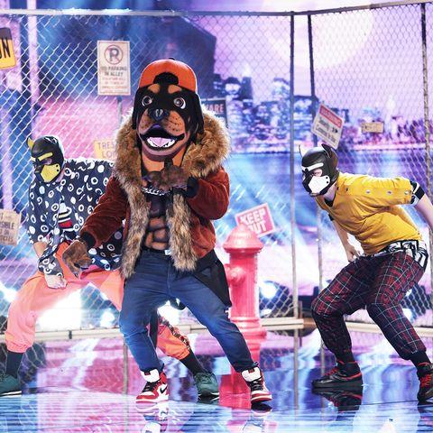 masked singer rottweiler