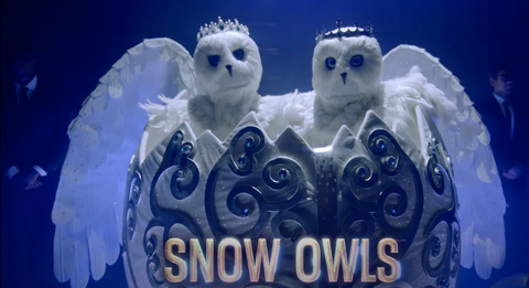 Snowy owls from the fourth season of the masked singer