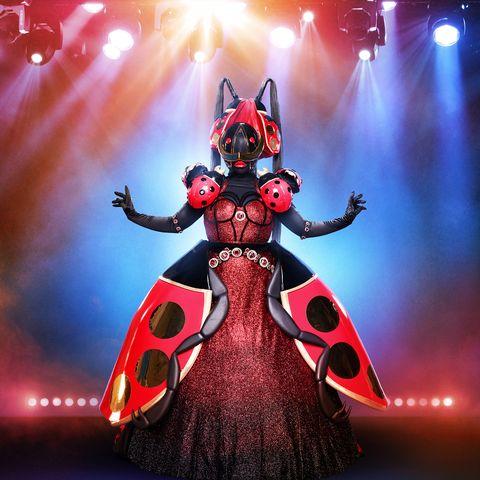 masked singer ladybug
