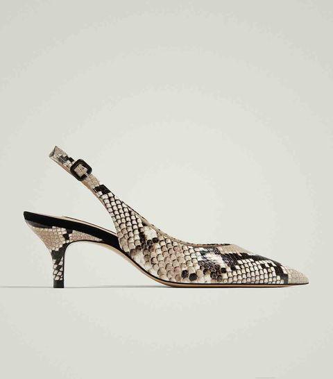 moda, zapato Masssimo Dutti
