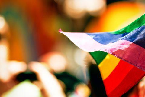 rainbow flag representing gay rights