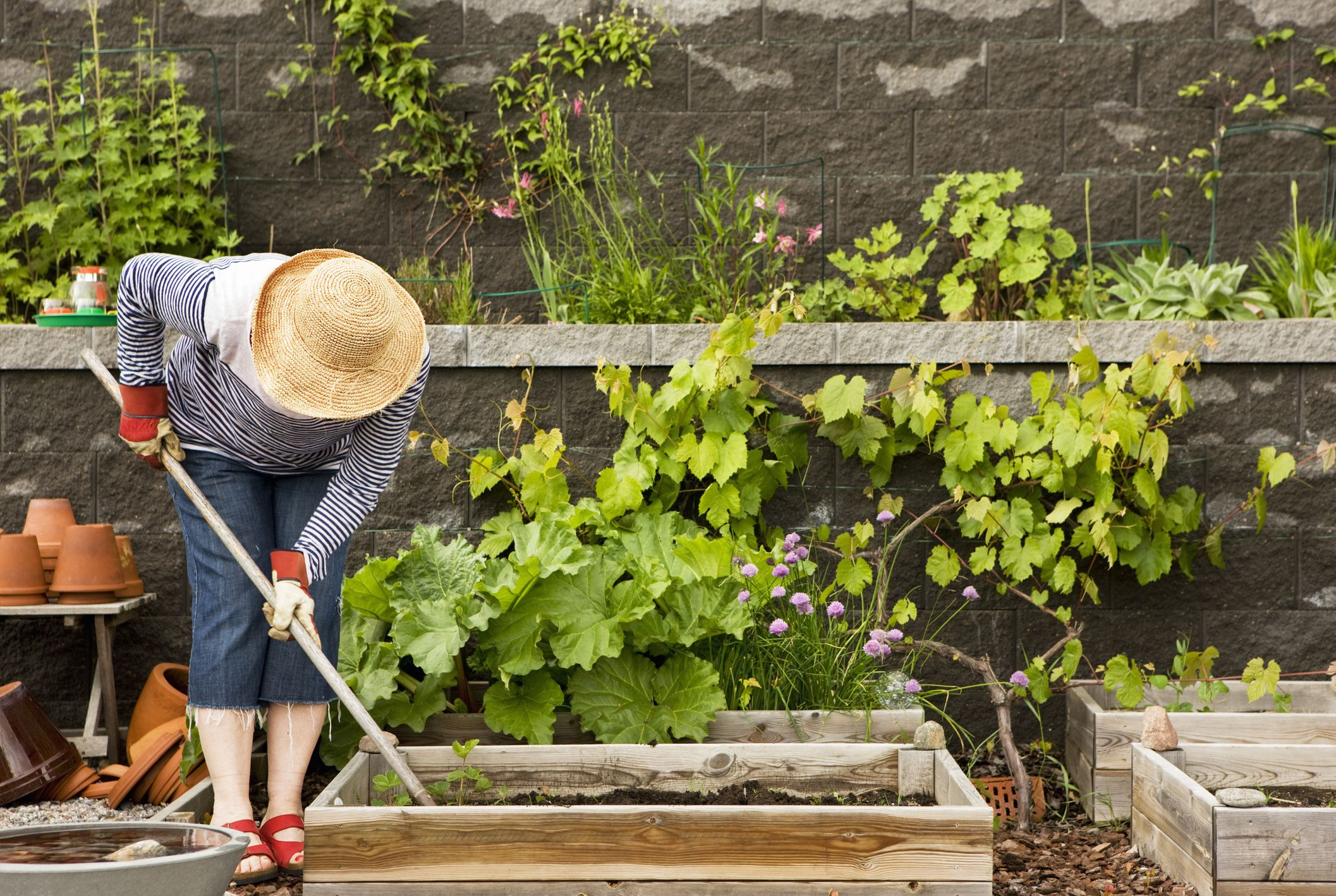 16 of the Best Gardening Tools for an Absolutely Luscious Lawn