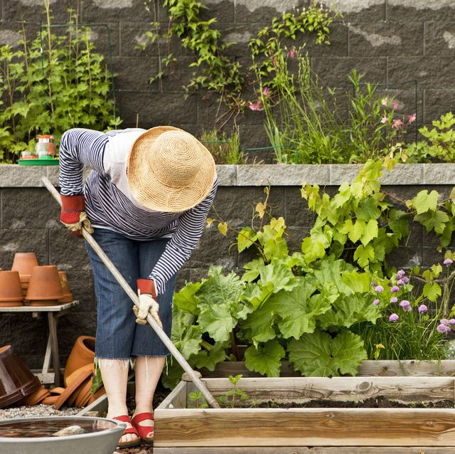 16 Best Gardening Tools For Summer Essential Supplies For Gardening