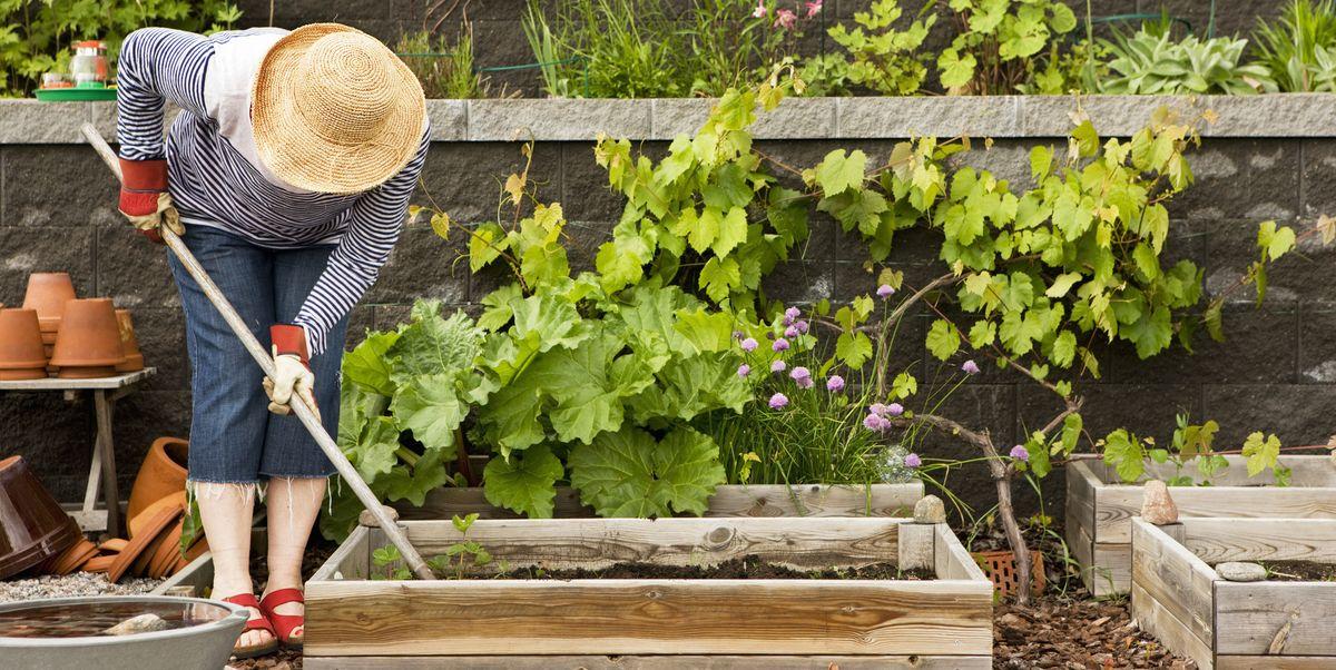 16 Best Gardening Tools For Summer Essential Supplies For Gardening