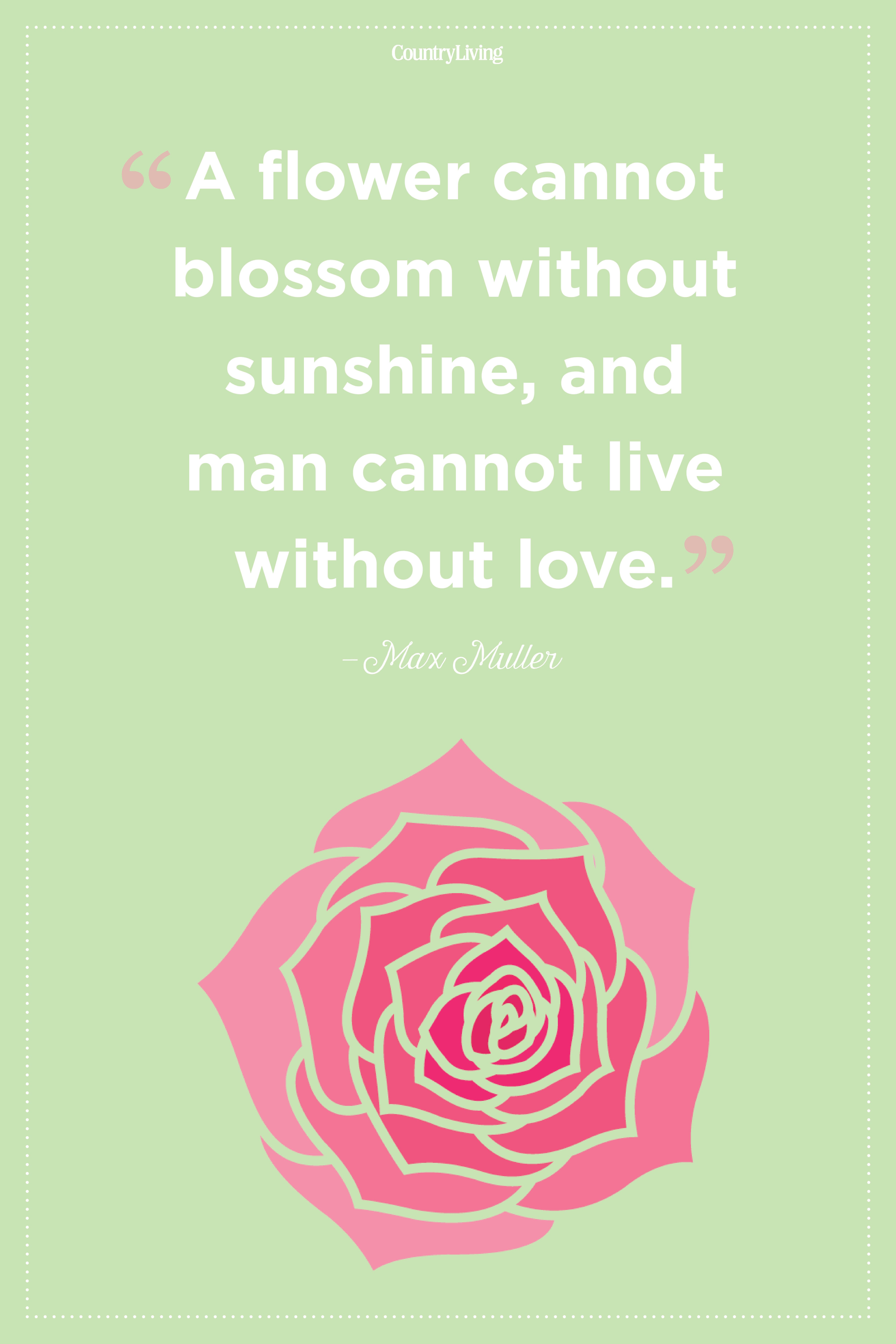 max muller flower quote