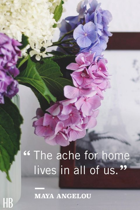 maya angelou​ home quote