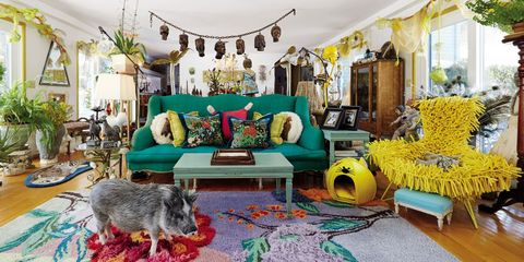 Living room, Room, Interior design, Furniture, Yellow, Property, Turquoise, Home, Couch, studio couch,