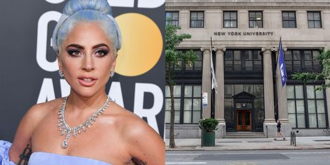 lady gaga college nyu