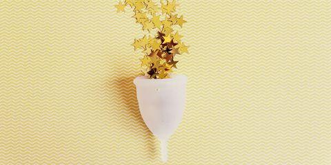 Flower, Plant,