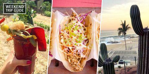 Food, Dish, Cuisine, Fast food, Street food, Side dish, Vegetarian food, Peach, Finger food, Junk food,