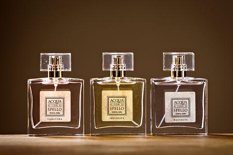 Perfume, Glass bottle, Product, Bottle, Liquid, Fluid, Cosmetics,