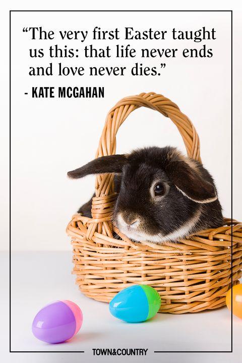 Domestic rabbit, Easter bunny, Basket, Picnic basket, Wicker, Easter, Rabbit, Photo caption, Hamper, Storage basket,