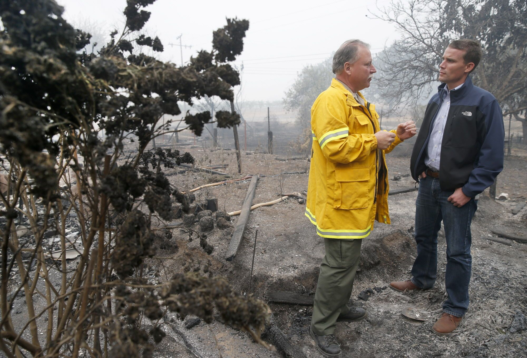 Mendocino Co. Sheriff Tom Allman briefs state Sen. Mike McGuire on Monday morning's fire next to singed marijuana plants (left) that were growing at a home destroyed by fire on East Road in Redwood Valley, Calif. on Tuesday Oct. 10, 2017. Authorities have reported at least three people have died and 50 residences have been destroyed by the Redwood Complex Fire.