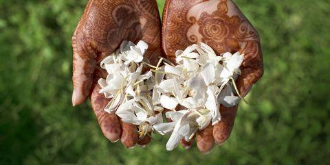 Hand, Grass, Nail, Bride, Plant, Gesture, Marriage, Flower, Wildflower,