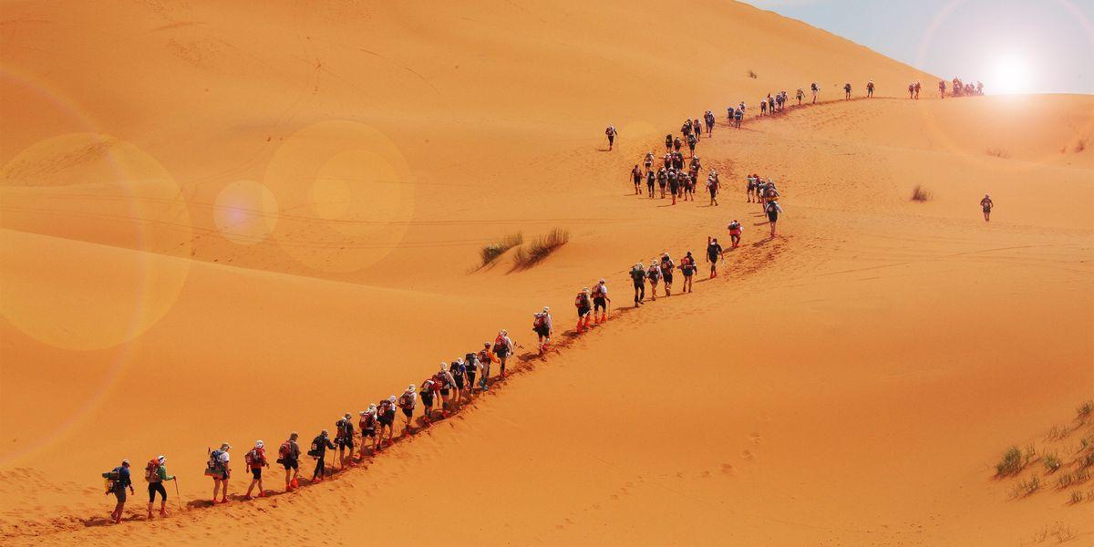 What is the Marathon des Sables?