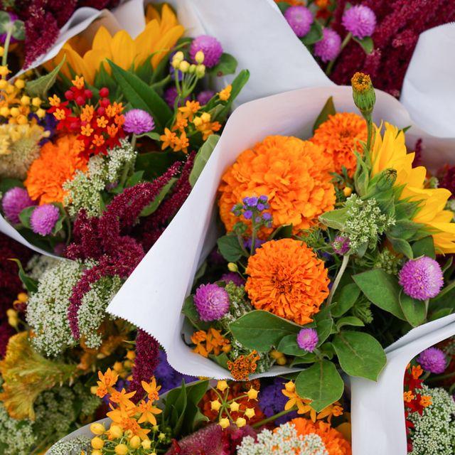 Flower, Cut flowers, Floristry, Floral design, Plant, Flower Arranging, Bouquet, Spring, Flowering plant, Annual plant,