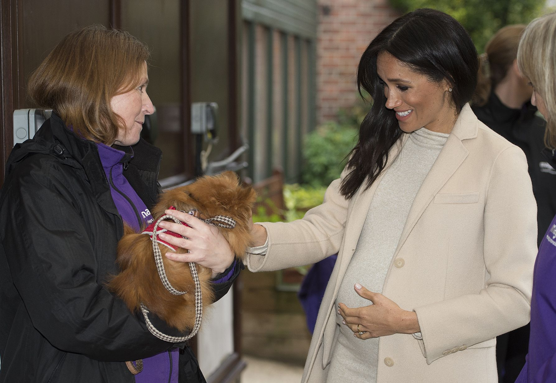 Meghan Markle meets a dog at Mayhew, a charity of which she is now patron.