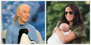 meghan markle baby archie harrison jane goodall
