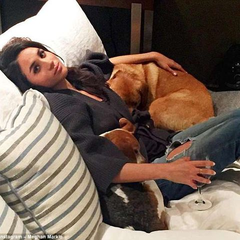 Meghan Markle with Rescue dog and wine