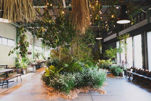 東京, ガーデン, 結婚式, ウエディング, 緑, おしゃれ, グリーン