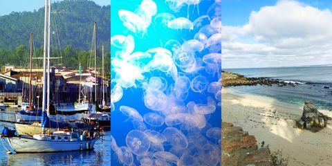 Water, Blue, Sky, Art, Watercolor paint, Ocean, Sea, Cloud, Travel, Paint,