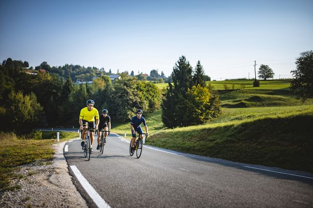 men in 20s and 30s cycling uphill in summertime countryside