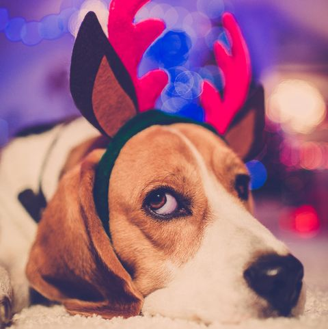 10 ways to take care of your mental health this christmas