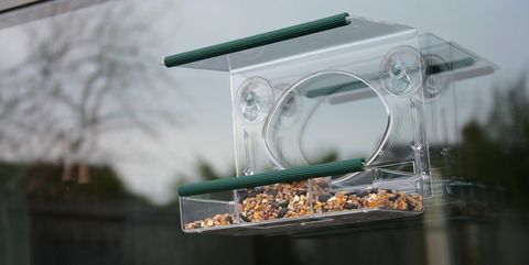 Meripac Window Feeder - Amazon