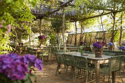 petersham nurseries garden shop