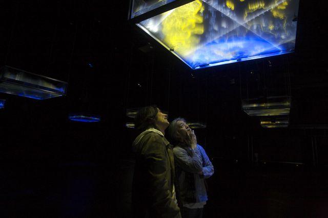山口情報芸術センター[ycam]音楽家の坂本龍一と アーティストの高谷史郎とycamによるの展覧会 「art –environment–life(アート・エンバイロメント・ ライフ)2021」