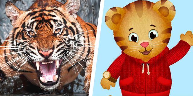 angry tiger daniel tigers neighborhood covid rage