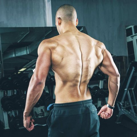 Back muscles on a young man gym