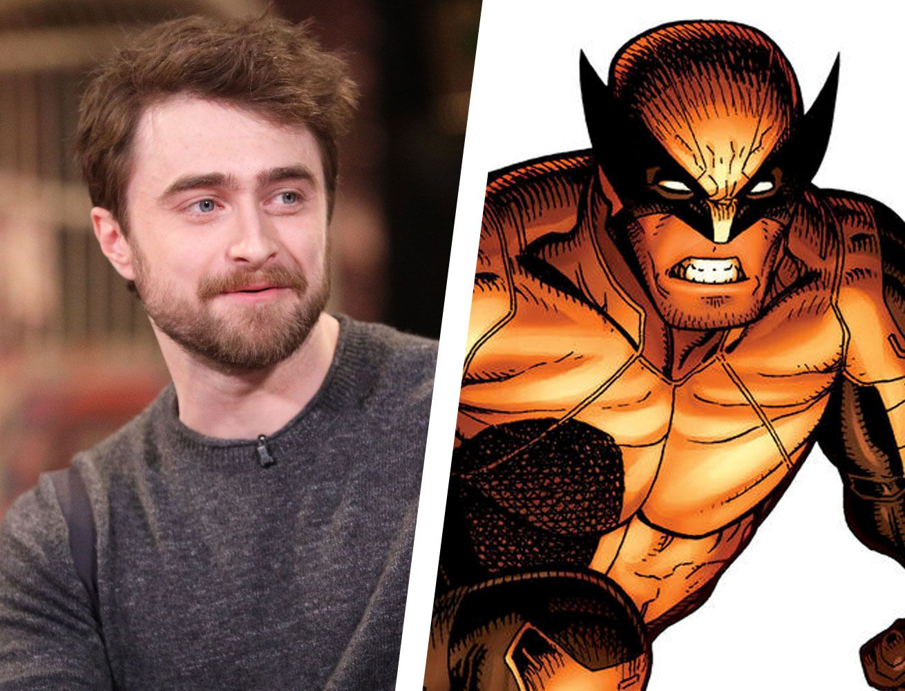 Fans Are Already Imagining How Daniel Radcliffe Could Look as Wolverine