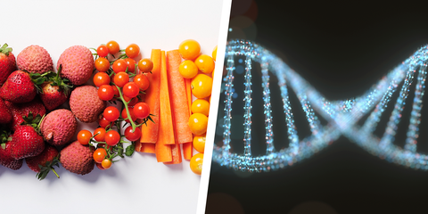 Reviewing Habit's DNA Testing Kit for Diets