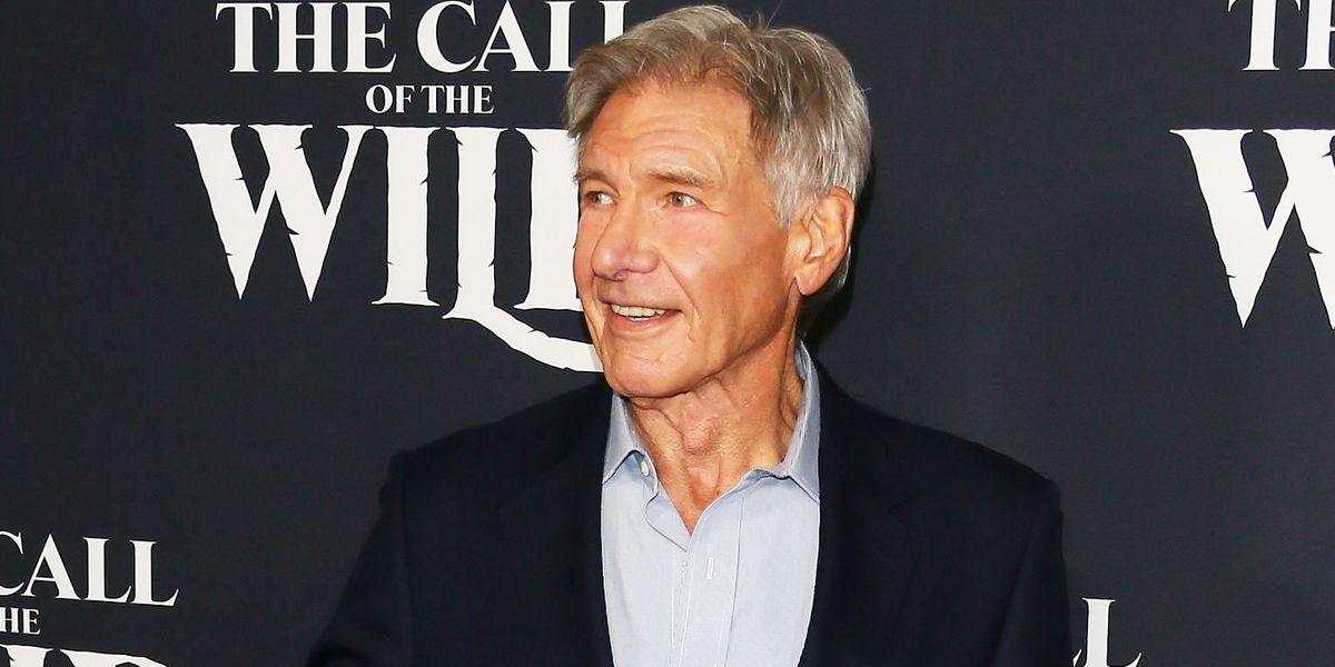 Harrison Ford Indiana Jones Star Wars, Harrison Ford, abdomen, actor png | PNGEgg