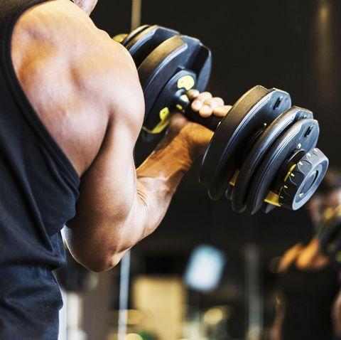 10 best adjustable dumbbell sets for home gym workouts 2019