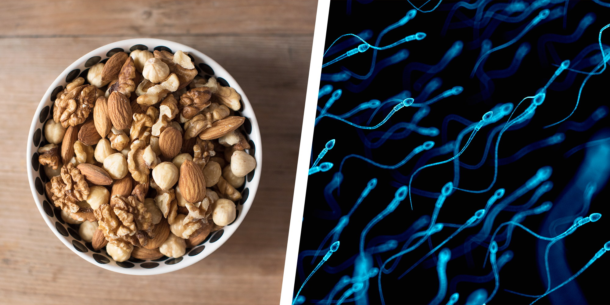 Eating Nuts Every Day Could Make Sperm Stronger