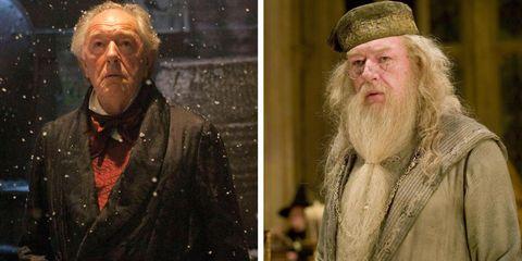 23 actores de \'Harry Potter\' y \'Animales fantásticos\' también han ...