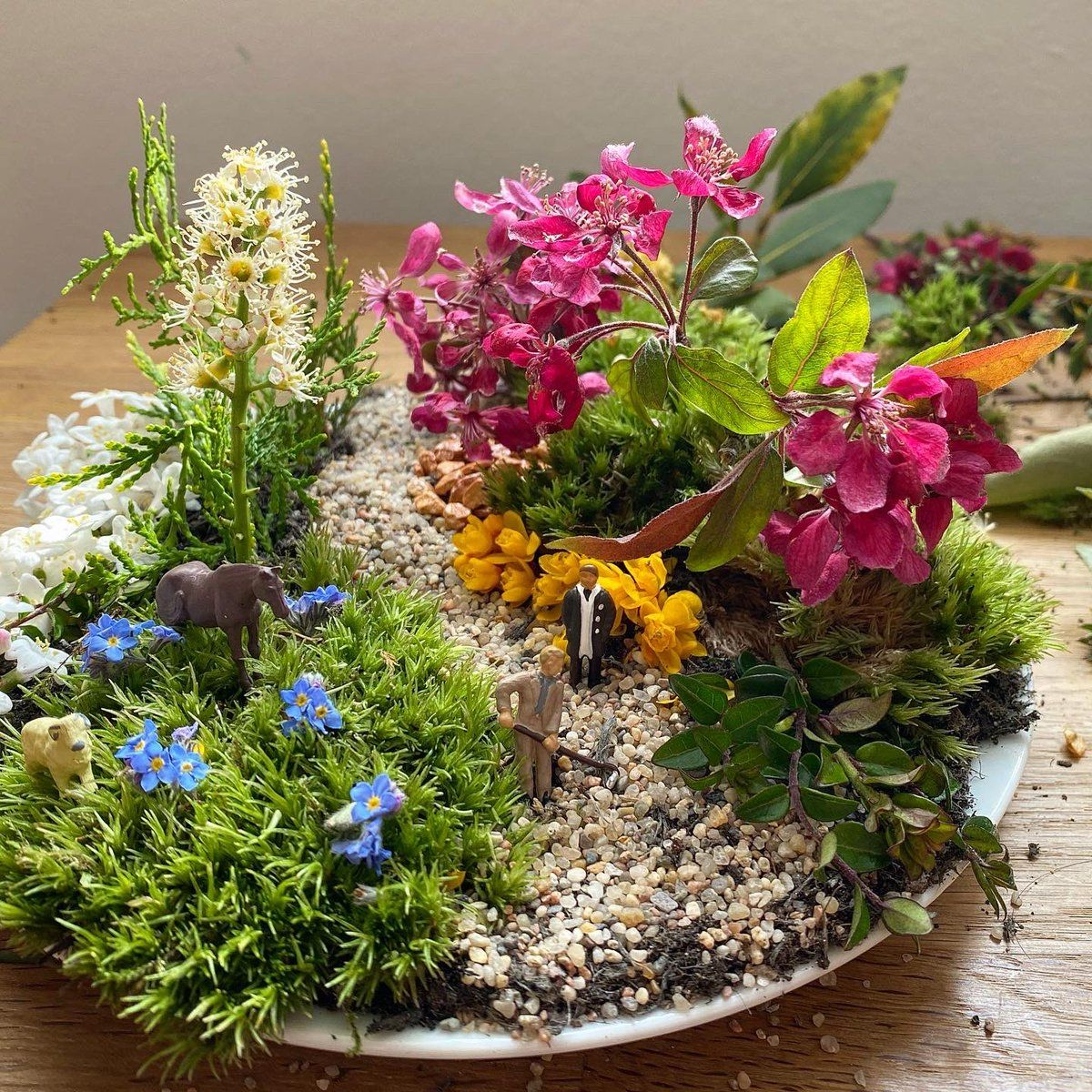 Michael Perry Shows How To Make Plot On A Plate Miniature Garden
